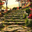 Walkway at Bomunho Lake by Barbara  Brown
