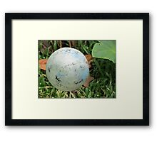 Suspended SPHERE! Framed Print