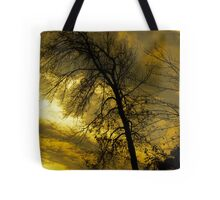 Sunset's Weight Tote Bag