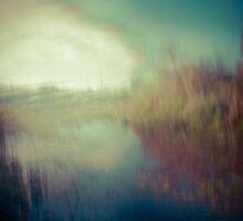 Pond'ering by Su Walker