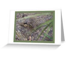 Croc-eye Greeting Card