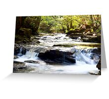Another Pontypridd River Scene Greeting Card
