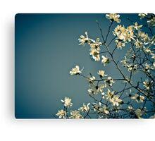 Spring Skies Canvas Print
