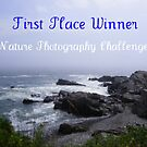 Challenge Banner Entry - Nature Photography by quiltmaker