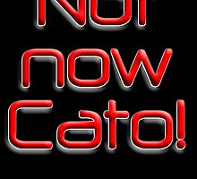 Not now Cato! Cato Fong, Inspector Clouseau, Film, Chinese manservant, Pink Panther by TOM HILL - Designer