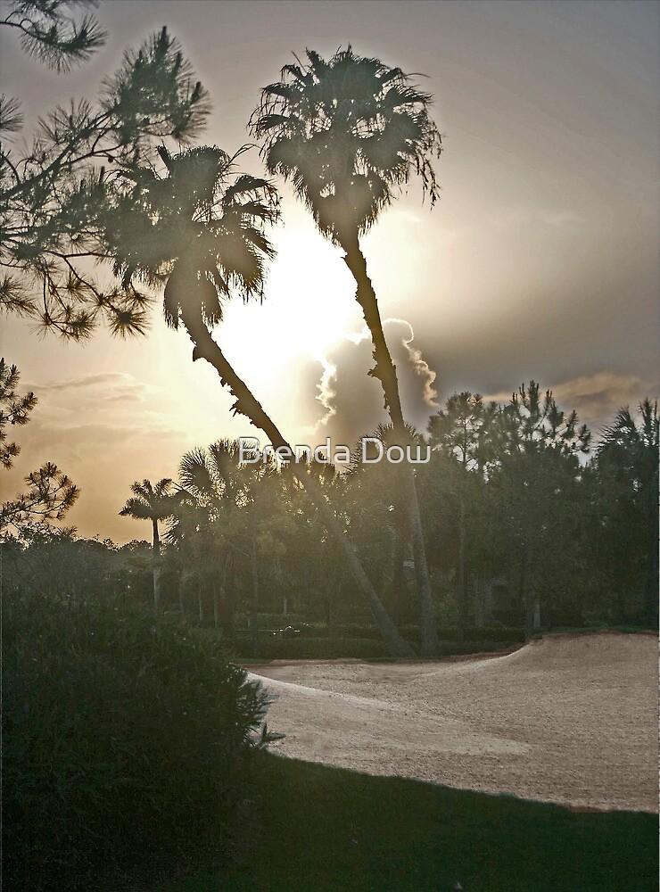 Swiftly,........sunrise, sunset......... by Brenda Dow