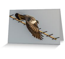 Aerial Encounter 9 - Departure Greeting Card