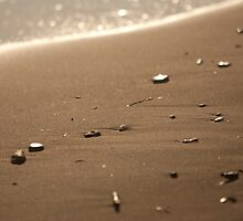 beach pebbles by DanielVijoi