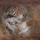Sleeper by Kay Kempton Raade