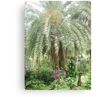 Dazziling flowers climbing up magestic palm tree Canvas Print