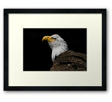 Eye On The Sky Framed Print