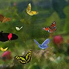 Butterfly joy by Dulcina
