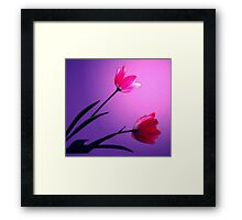 THE SIMPLE JOY Framed Print