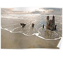 Wreck of Peter Iredale 4 Poster