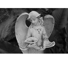 Calla Lily Statue Photographic Print