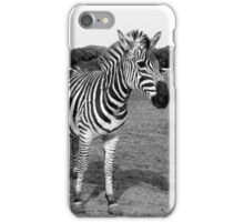 Zebra I iPhone Case/Skin