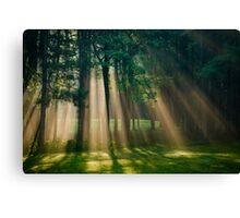 Heaven's Light Sunrise Landscape Canvas Print