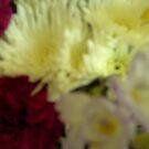 Sun kissed floral by anaisnais