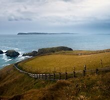 Path to Carrick-A-Rede by Przemek Czaicki