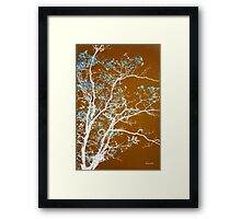 Chocolate Forest  Framed Print