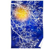 Blue Tree Abstract Poster