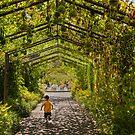 Garden Games by Marilyn Cornwell