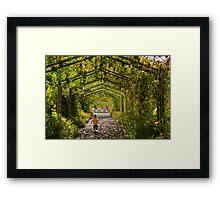 Garden Games Framed Print