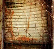 Faded Memories ©  by Dawn M. Becker