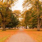Autumn Park by Khrome Photography