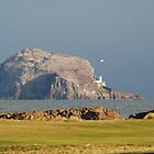 Bass Rock from Glen golf course, North Berwick by Michelle Bailey