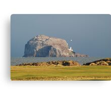 Bass Rock from Glen golf course, North Berwick Canvas Print