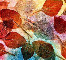 """Autumn is Coming to Australia by Belinda """"BillyLee"""" NYE (Printmaker)"""