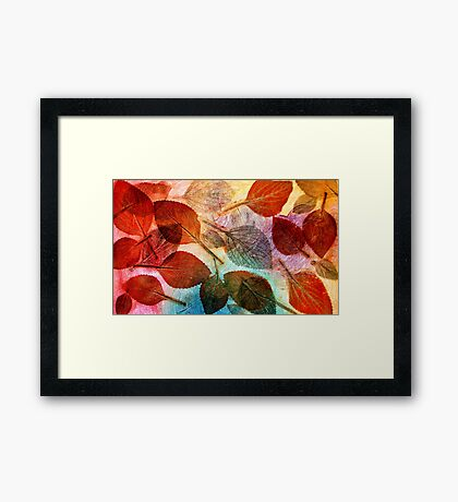 Autumn is Coming to Australia Framed Print