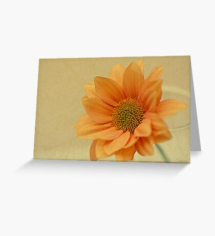 Less is More... Greeting Card