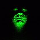 Laser Head by Scott Irvine