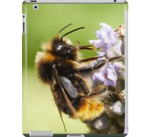The bee and the lavender iPad Case/Skin