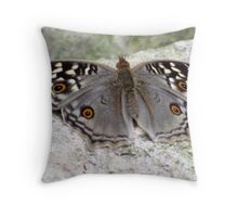 Beautiful Grey Butterfly Resting On A Rock Throw Pillow