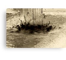 Inverse Water Fall Canvas Print