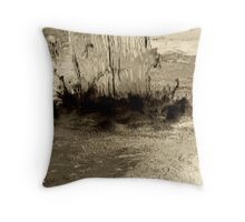 Inverse Water Fall Throw Pillow