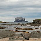 Bass Rock, low tide by Michelle Bailey