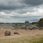 Bass Rock, low tide 2 by Michelle Bailey