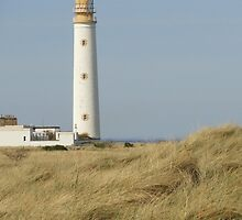 Barnes Ness Lighthouse, springtime, photograph by Michelle Bailey