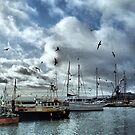 The Fleets In!  by naturelover