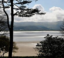 Looking across to the otherside by Karen  Betts