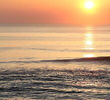 Clear Sky - Outer Banks Morning by Joe Diebold
