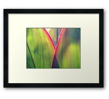 Color in leaves Framed Print