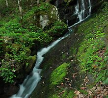 Spring Waterfall by J. L. Gould