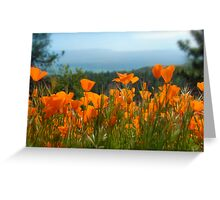 A lovely view Greeting Card