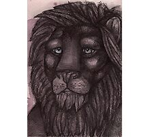 The Lion that Dreams Photographic Print
