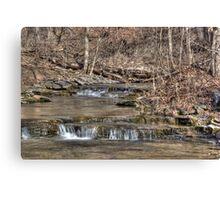 River Stream Canvas Print